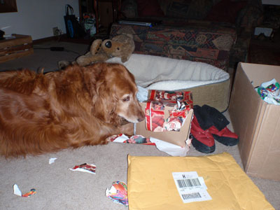 I love to open presents!